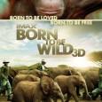 Trailer Born To Be Wild 3D – narat de Morgan Freeman