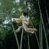 Wo hu cang long (2000)