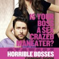 Trailer si Postere pentru Horrible Bosses